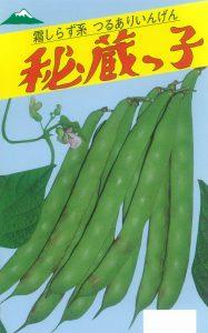 秘蔵っ子菜豆