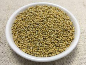 モチアワ 種子