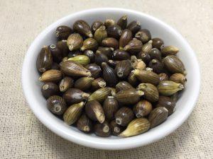 ハトムギ 種子