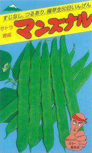 マンズナル菜豆