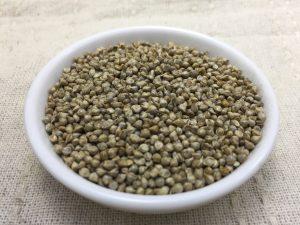 ダルマヒエ 種子